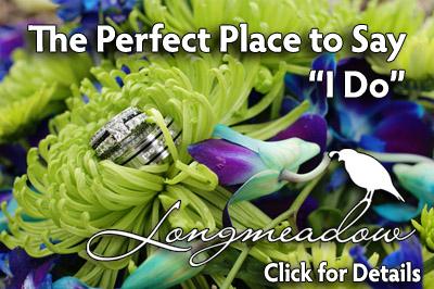 Eastern Colorado Wedding Venue Longmeadow