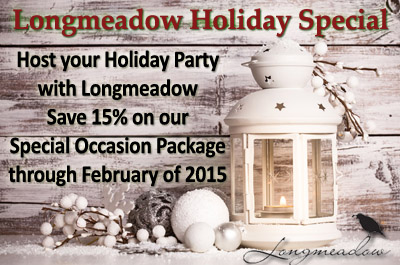 Xmas party special offer save 15%