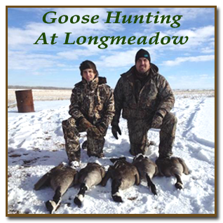 Colorado's Best Goose Hunting is at Longmeadow Game Resort
