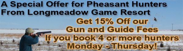 Pheasant Hunting 15% off Special in Colorado