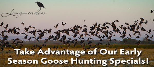 Colorado Goose Hunting Specials