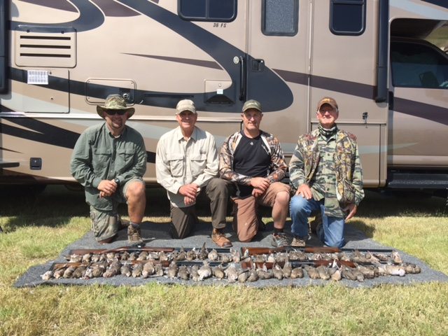 A picture of four dove hunters and their quarry lined out in front of them