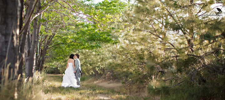 Longmeadow Colorado's Best Wedding Venue