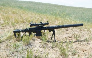Hunting rifle with bipod in a field