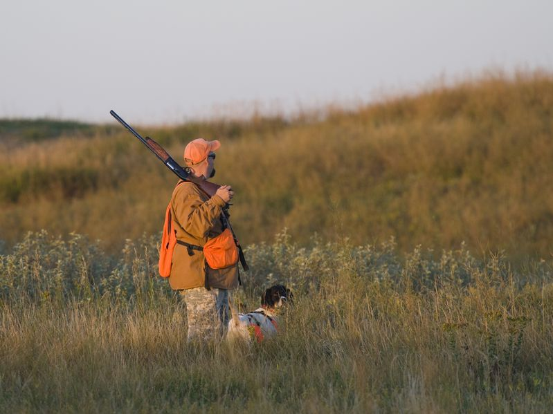 Chukar hunter with dog in field