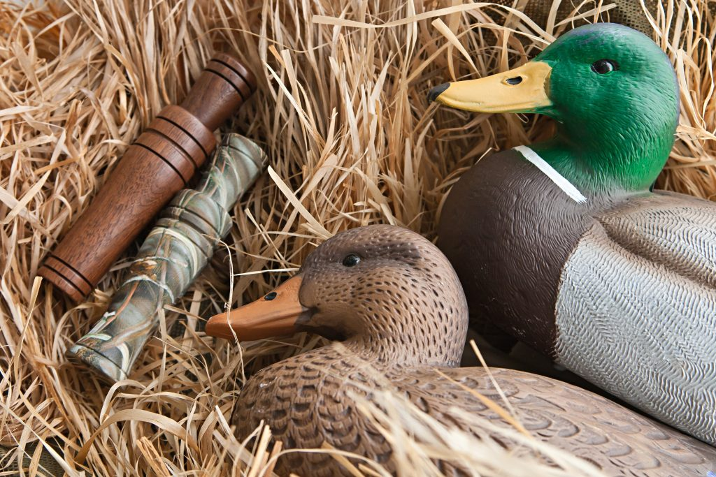 A photo of two duck decoys and some duck calls