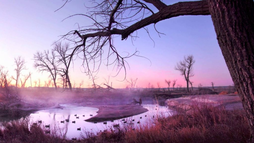 Colorado duck hunting grounds at dusk