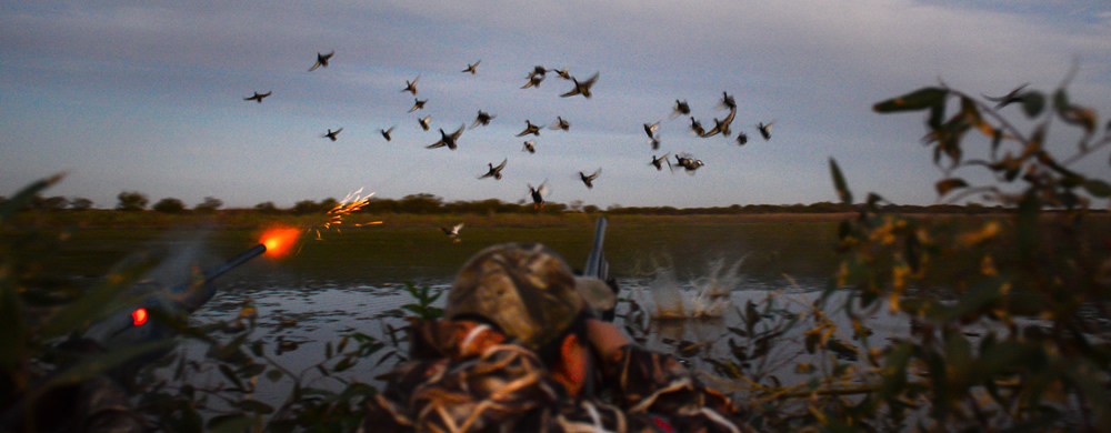 Duck hunters firing on a flock of ducks taking off from a wetland