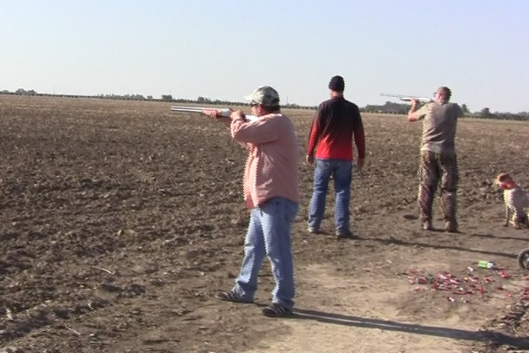 Photo of Colorado Dove Hunters at Longmeadow shooting shotguns