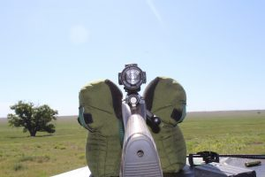 looking down the sights of a hunting rifle.